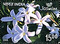 Stamp of India - 2008 - Colnect 157961 - Jasmine Scented.jpeg