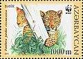 Stamps of Azerbaijan, 2005-686.jpg