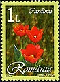 Stamps of Romania, 2006-037.jpg
