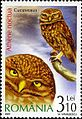 Stamps of Romania, 2007-032.jpg