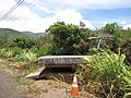 Starr-090720-3064-Antigonon leptopus-habitat with WWII bunker-Waiehu-Maui (24339591404).jpg