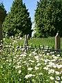 Staveley churchyard - geograph.org.uk - 459375.jpg