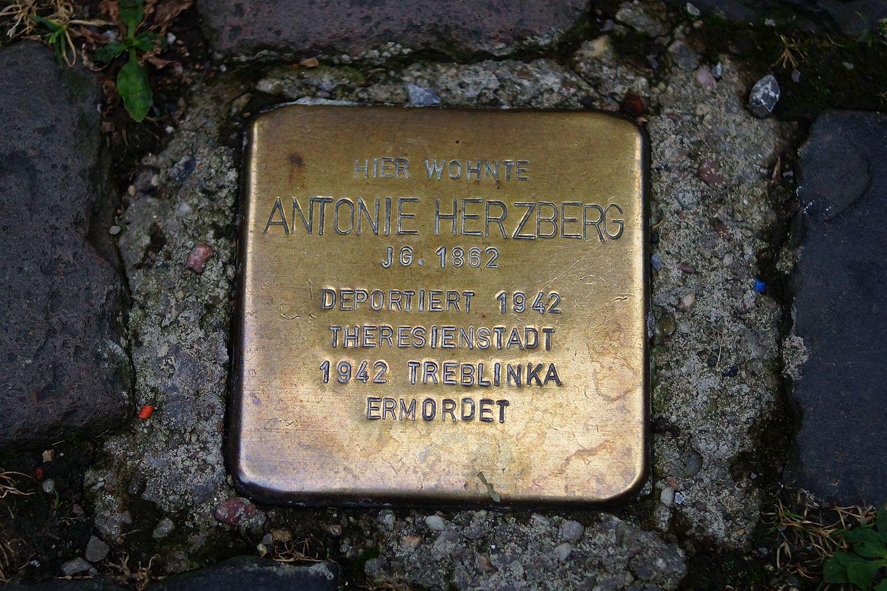 Stolperstein - Bacharach - Bauerstraße 5 - Antonie Herzberg.jpg