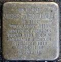 Stumbling stone for Moses Ziegellaub (Thieboldsgasse 102)