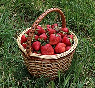 Strawberries in basket 2018 G1.jpg