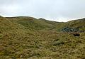 Summit of Moel Y Llyn - geograph.org.uk - 659588.jpg