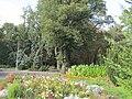Sumy - Asmolov park (p3).JPG