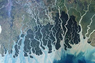 Bengal famine of 1943 - Satellite imagery from 1999 of the Sundarbans forest along the Bay of Bengal, showing its riverine character