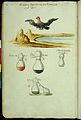Symbolic alchemical watercolour drawings Wellcome L0033062.jpg