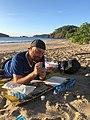 Synthetic Biology Costa Rican Beach.jpg