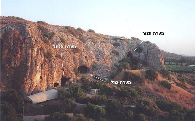 La cueva Tabun en el Monte Carmelo fue excavada por Dorothy Garrod