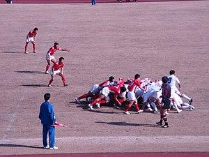 神奈川タマリバクラブ's relation image