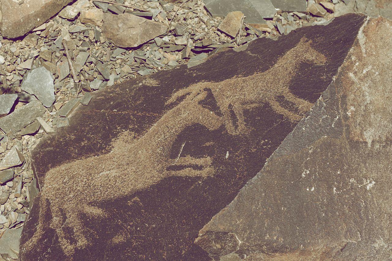 Tamgaly Petroglyphs Horses and humans.jpg