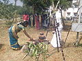 Tamil New Year and Pongal Celebrations.jpg