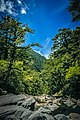 Taroko National Park Hehuan Creek Wang Ta-Chih 031.jpg