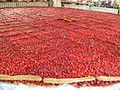 Tarte aux fraises de 8 m de diamètre de Beaulieu sur Dordogne, France 2.JPG