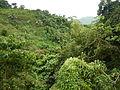 Taysan,Batangasjf9674 20.JPG