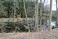 Terenniezbadanego grodziska nad rzeką Regą.JPG