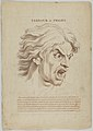 Terrour or Fright (from Heads Representing the Various Passions of the Soul; as they are Expressed in the Human Countenance- Drawn by that Great Master Monsieur Le Brun) MET DP854027.jpg