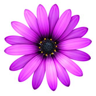 TextMate - Image: Textmate Icon
