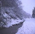 The Elgar Walk in winter snow - geograph.org.uk - 783362.jpg
