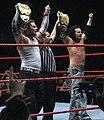 The Hardy Boyz.jpg
