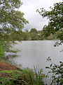 The Lower Lake, Eridge Park, near Tunbridge Wells - geograph.org.uk - 268230.jpg