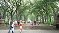 The Mall & Literary Walk, Central Park, Manhattan, NYC.JPG