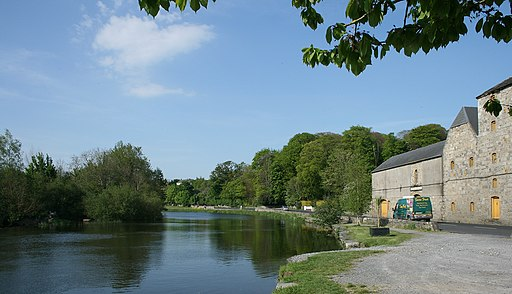 The River Barrow, County Carlow - geograph.org.uk - 1816353