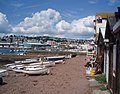 The Shore at Teignmouth - geograph.org.uk - 507339.jpg