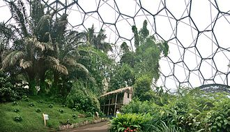 Eden Project - The Tropical Biome