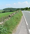 The road to Copt Oak - geograph.org.uk - 461715.jpg