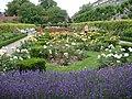 The rose garden (7592666900).jpg