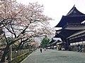 The sideways approach of Aso shrine..jpg