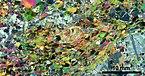 Thin section scan crossed polarizers Siilinjärvi R636-116.75.jpg