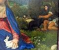 Tiziano, madonna del coniglio, 1525-30 ca. 04.JPG