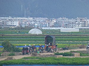 Tonghai County - fields south of Qilu Lake - P1360433.JPG