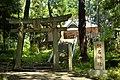 Torii of Iina-jinja shrine (Tsukuba city,Ibaraki Prefecture).jpg