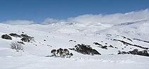 Towards Kosciuszko from Kangaroo Ridge in winter.jpg