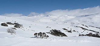 Mount Kosciuszko - Image: Towards Kosciuszko from Kangaroo Ridge in winter