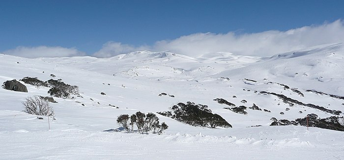 The Kosciuszko Main Range. Towards Kosciuszko from Kangaroo Ridge in winter.jpg