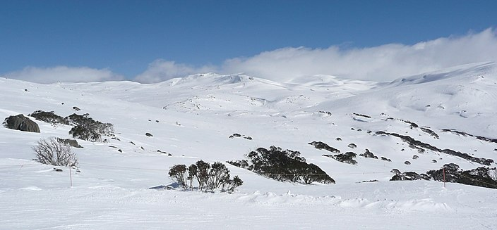 Image result for mount Kosciuszko wikipedia