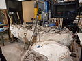 Trabajo paleontologico en el MEF 04.JPG