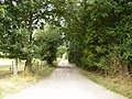 Track to Stormer Hall - geograph.org.uk - 220028.jpg