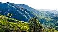 Trail 3 Margalla Hills Islamabad.jpg