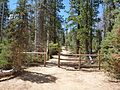 Trail to Duck Creek Ice Cave, dyeclan.com - panoramio.jpg