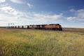 Train near Casper, Wyoming LCCN2010630857.tif