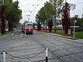 Tram der Wiener Linien (3732163114).jpg