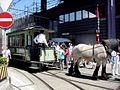 Tram hippomobile des TN.JPG