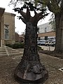 Tree of Good and Evil image 4.jpg